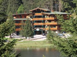 Alpen Appartements, 扎奥岑湖