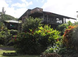 Backpackers Vacation Inn and Plantation Village