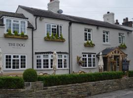 The Dog in Over Peover, Knutsford