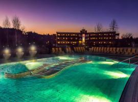 施泰格斯巴赫普哈斯升级温泉酒店, 施泰格斯巴赫