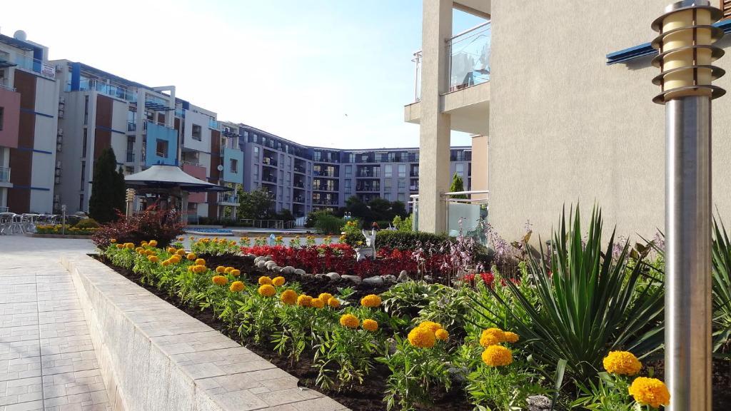 sun city bulgarien
