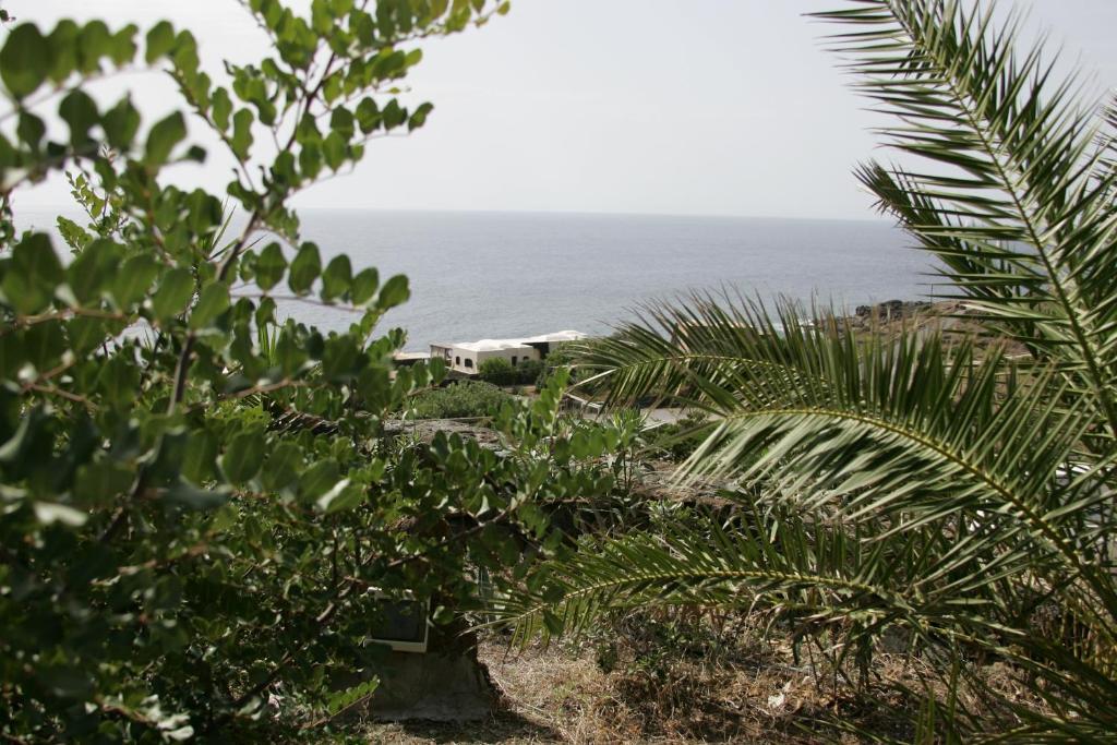 Villa Calypso - Pantelleria - Foto 5