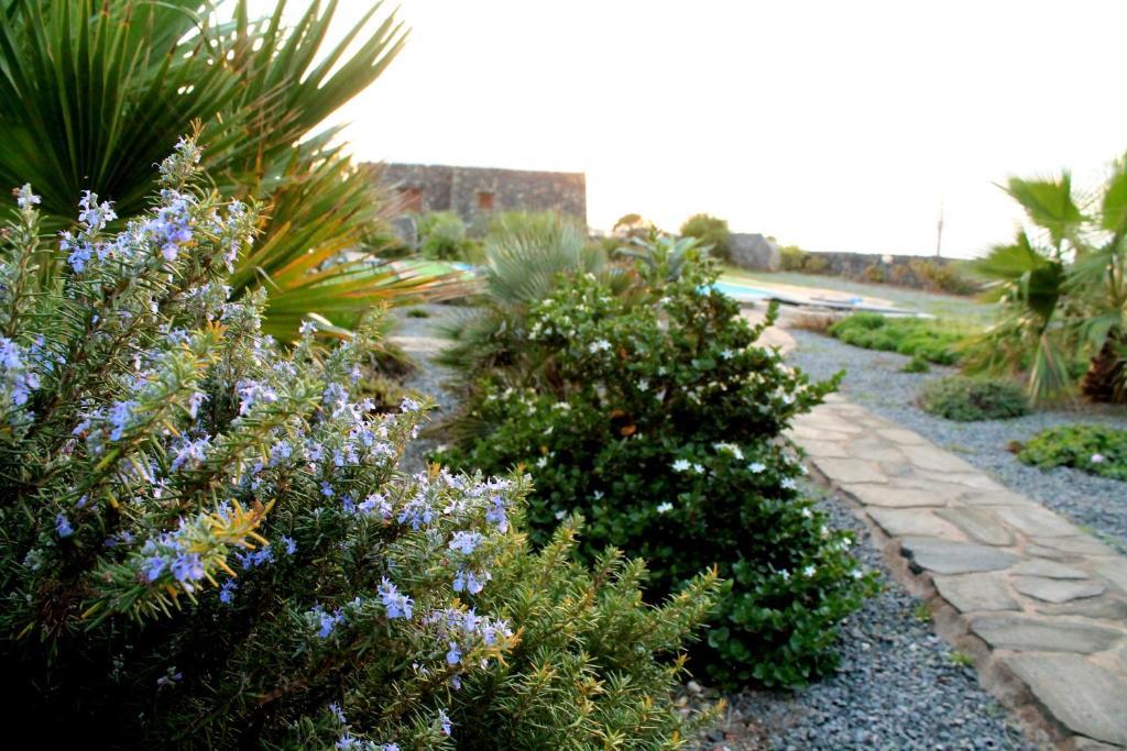 Residence Cuore Mediterraneo - Pantelleria - Foto 29