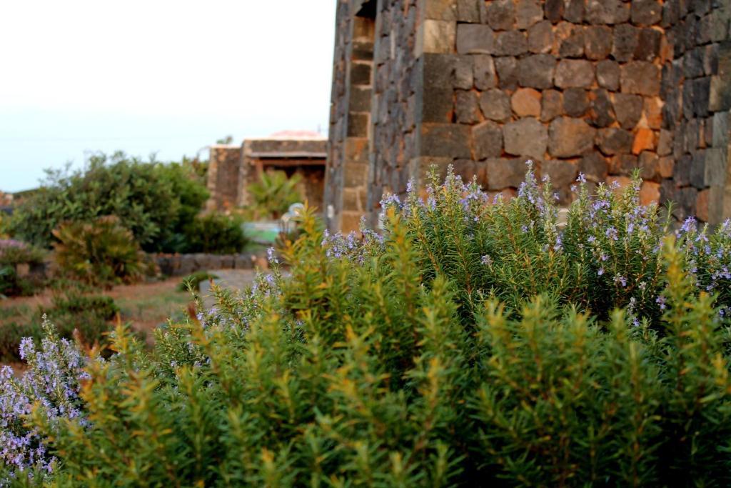 Residence Cuore Mediterraneo - Pantelleria - Foto 31