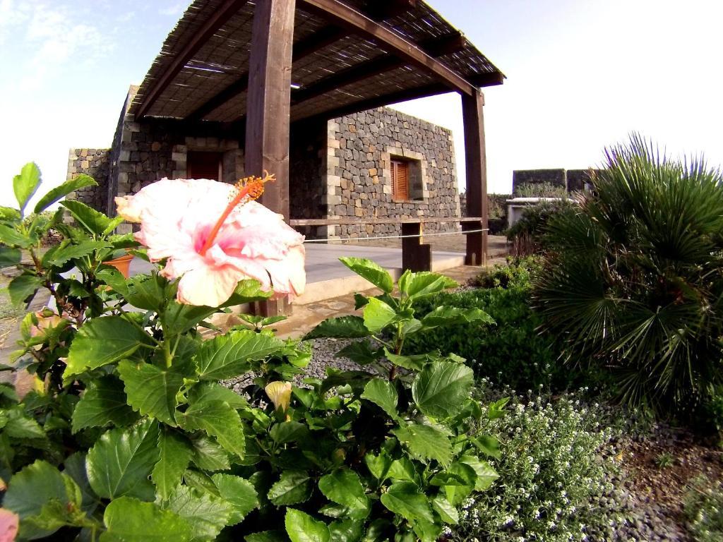 Residence Cuore Mediterraneo - Pantelleria - Foto 35