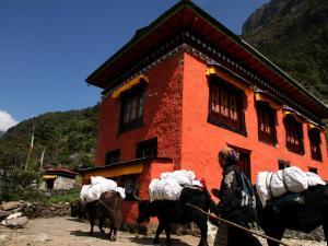 Yeti Mountain Home, Phakding - Image1