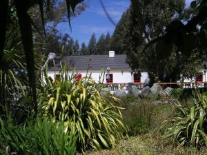 Dongel House