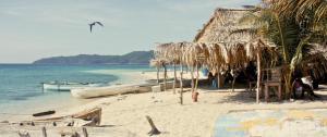 Turtle Bay Eco Resort - Image1