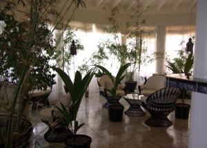 Evergreen Hotel - Image2
