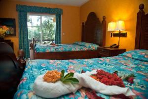 Hotel Palma Real - Image3