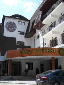 Hotel Valea cu Pesti - Image1
