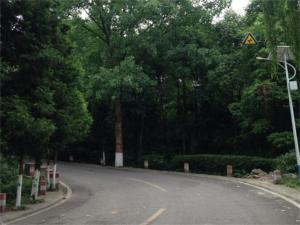 Mianyang Luofushan Hongyun Hostel, ,