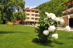 Hotel Delta - Image1