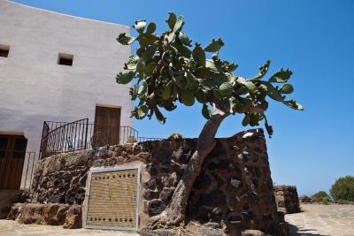 Dammusi Al-Qubba Wellness & Resort - Pantelleria - Foto 28