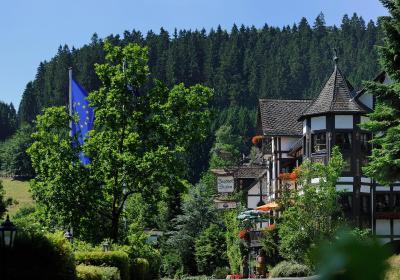 Bad Laasphe Hotel Jagdhof Glashutte