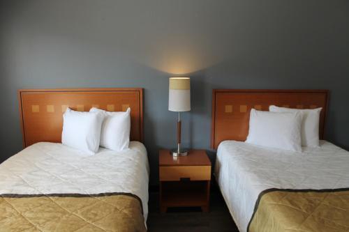 亚特兰大市中心部德吉特尔酒店及套房