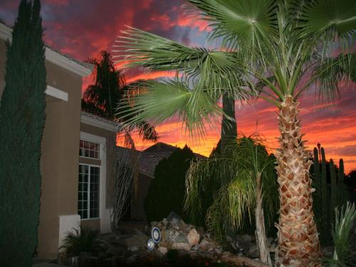 Arizona Home