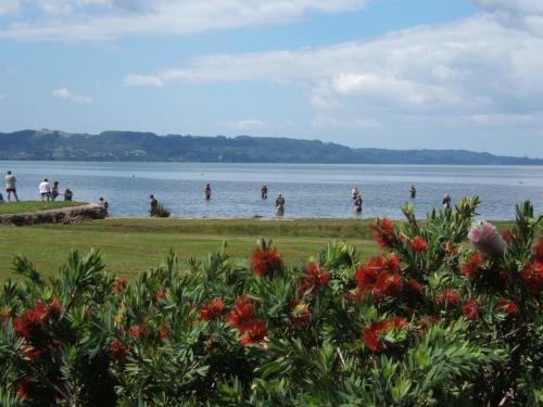 诺吉奥塔哈湖畔小屋酒店(Ngongotaha Lakeside Lodge)