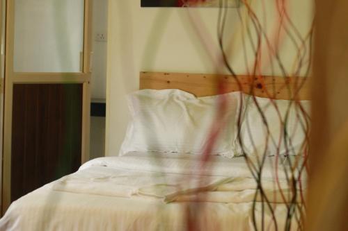 科钦堡娜玛斯特住宿加早餐旅馆