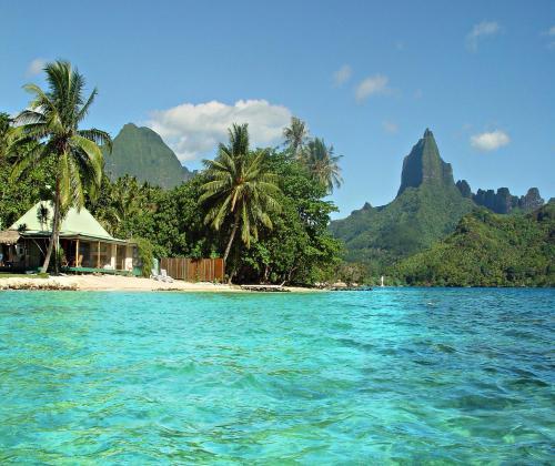 Robinson's Cove Villas