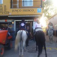 Hostal Junco Fresco