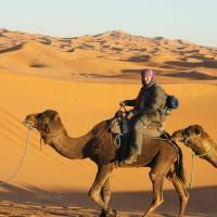 马哈巴营地、骆驼及滑沙豪华帐篷