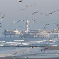 Holiday home Parel Aan Zee
