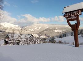 Horska Chata Dimrovka, بيك بود سنيزكو