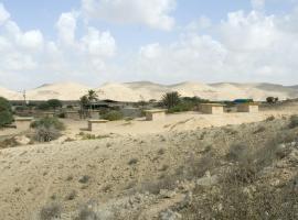 חוות הגמלים בנגב, דימונה