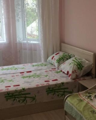 Family Guest house on Odesskaya