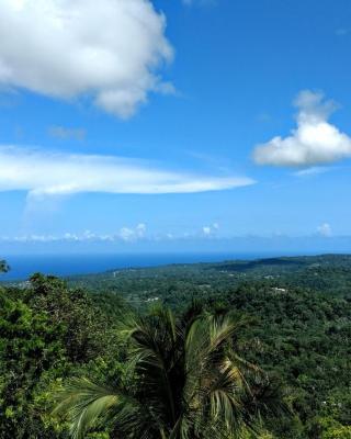 牙买加雄狮山林小屋