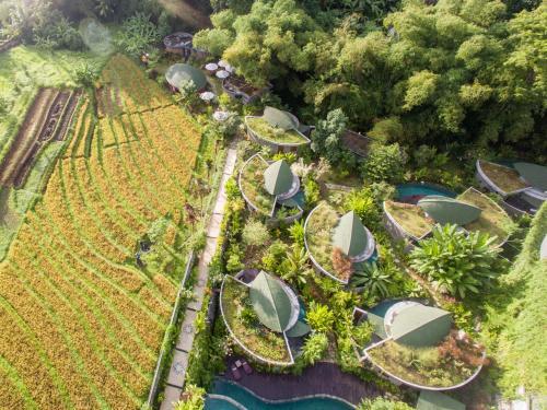 印尼 海神庙10家最赞住宿