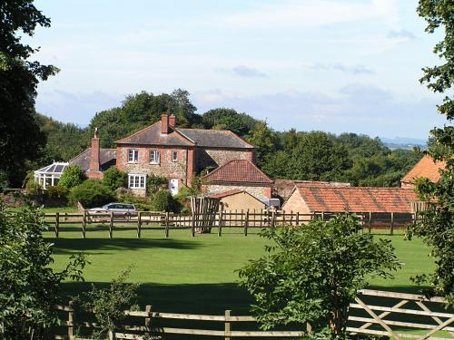 Blounts Court Farm